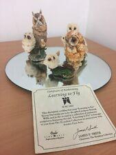 Border Fine Arts Hamilton Collection Trio of Owl Figurines HWB 97 HWB 96 VGC