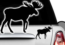 1x Car Sticker DEER MOOSE Bulldog French Bulldog Bulli Bully Sweden dog