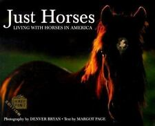 Just Horses : Living with Horses in America by Margot Page Hardcover NEW