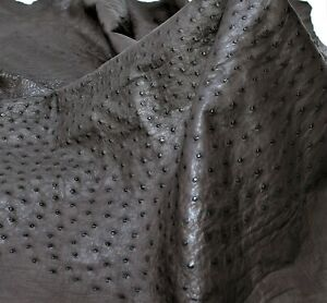 Ostrich Leather Hide Leather Nicotine Color (%100 Genuine Natural skin)