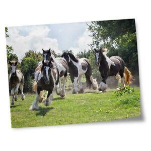 """8x10"""" Prints(No frames) - Gypsy Vanner Horse Herd  #45272"""