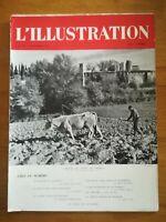 L'ILLUSTRATION N°5090 WW2 1940 jardin d'hiver Muséum Paris - Afrique orientale