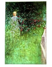 Carl Larsson Poster In the Hawthorne Hedge Offset Lithograph Unsigned 14x11