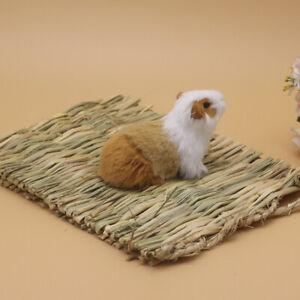 1X Animal Hamster Mat Grass Chew Breakers Toy Rabbit Rat Guinea Pig House Pad