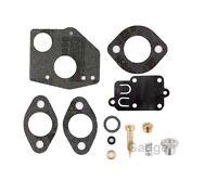 Carburetor Carb Overhaul Rebuild Repair Kit For Briggs & Stratton 495606 494624