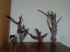 "Driftwood Pieces, x3  "" tree"" shapes. viv, craft or table centre. bogwood"
