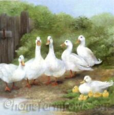 Pack of 20 Paper Napkins - Ambiente - Napkin / Decoupage - White Geese/Goose