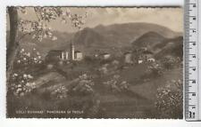 Veneto - Colli Euganei Panorama di Teolo - PD 4463