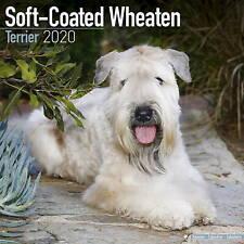 Soft Coated Wheaten Terrier Calendar 2020 Premium Dog Breed Calendars