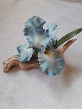 Ronald van Ruyckevelt The Royal Horticultural Society Blue Sapphire Iris 1983