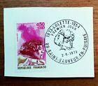 Ecrivain 1973 France 1747 COLETTE   timbre 1° jour Saint Sauveur en Puisaye