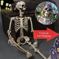 US Stock Realistic Human Skeleton Halloween Party Decor Skull Bone Creepy Prop