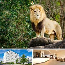 2 Tage Dresden Familienurlaub mit Familienzimmer, Rad & Zoo Hotel ACHAT Comfort