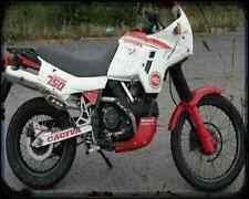 CAGIVA ELEFANT 750 89 2 1 A4 Metal Sign moto antigua añejada De