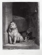 Interesting Sir Edwin Henry Landseer 1800s Steeel Engraving LOW LIFE Signed COA