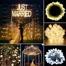 33ft Berry Balls Globes LED Fairy String Lights +US Plug Warm White Xmas Wedding