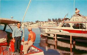 Hollywood California Yacht Basin Koppel Florida Natural Color Postcard 21-4737