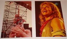 Van Halen David Lee Roth Original Set Of 2 Concert Photos