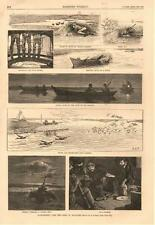Duck Shooting Near the Capes of Delaware - by A. B. Frost   -   1882