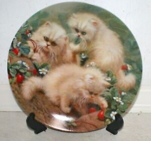 """Amy Brackenbury's Cat Tales Collection: """"Strawberries & Cream"""" Collectors Plate"""