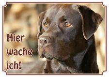 Hundeschild Labrador Retriever - wetterfestes Premiumschild aus Metall