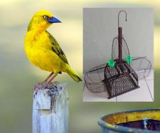 Double trap & two single traps   (3 traps)  aviary stocking bird recapture....