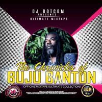 THE CHRONICLES OF BUJU BANTON  REGGAE MUSICAL MIX CD