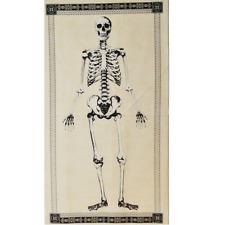 100% Cotton Fabric Timeless Treasures Human Skeleton Bones Halloween Panel