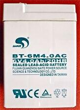 Akku für CAS Waagen Modell ER Junior und ER Plus, KERN RPB, Dibal G-310 Batterie