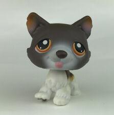 Littlest Pet Shop #174 Husky Siberian Dog Brown White Orange Dot Eyes Lps