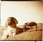 EGYPTE Le Sphynx de Gizeh Archéologie ca 1910, Photo Stereo Plaque Verre PL59OY2