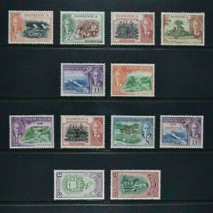DOMINICA, KGVI, a collection of 12 stamps for sorting, MM condition.