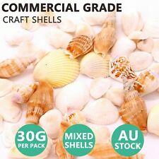 Mixed Craft Sea Shells Natural White Beach Sea Shells 30g Aquarium Decor 25 65mm