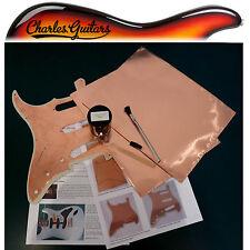 Guitarra Protector Protección Pintura 60ml Kit + 2 Lámina de cobre (ch50008)