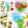 Colorful Nail Art Dried Preserved Flower 3D Decoration Heart-Shaped  DIY