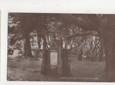 The Normans Stone Battle Abbey Sussex Vintage Postcard 703a