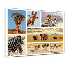 Leinwandbild - Afrika Collage II
