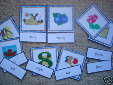 Teaching Resources - Literacy - Homophone Match