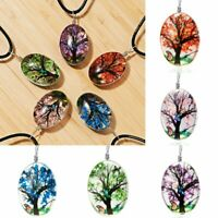 Fashion Butterfly Dried Flower Glass Leather Necklace Pendant Women Jewelry Gift