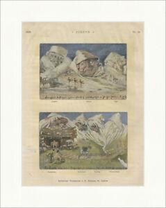 Schweizer Postkarten Mönch Jungfrau Eiger E Hansen St. Gallen Nr. 36 Jugend 5265
