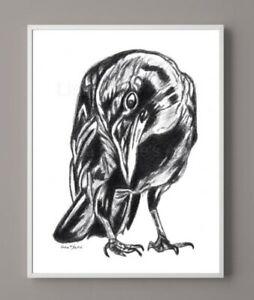 Crow Drawing, Bird Art, Graphite, Black and White, Pencil Art, Wall Decor