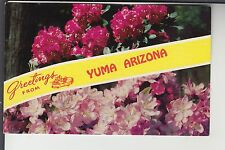 Chrome 2 View Flowery Greetings from Yuma Az Arizona