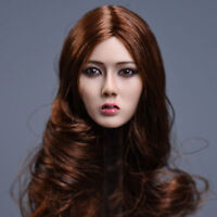 "YMTOYS 1:6 Scale Female Beauty Brown Hair Head Sculpt F 12"" PH HT Action Figure"