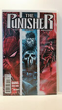 Marvel Comics Volume 9 The Punisher 10 Bagged and Boarded  2011 to 2012
