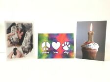 Dog-themed Greeting Cards - Set of 3 Dog Speak Cards
