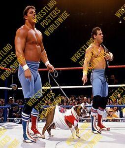 #917 WWF WWE THE BRITISH BULLDOG DYNAMITE KID BULLDOGS A4 RETRO ELITE POSTER