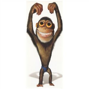 American Greetings Birthday Card: Funny Monkey...Does Someone Need a BD Hug?
