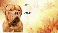 Dogue de Bordeaux Dog Self Adhesive Gift Labels by Starprint