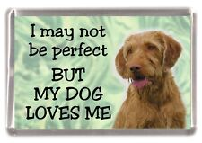 "Hungarian Wirehaired Vizsla Fridge Magnet ""I may not be perfect .."" by Starprint"