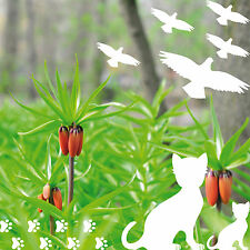 cats birds paws white die cut Window glass Protection vinyl decals stickers